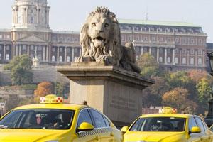 Humoros és komoly taxis hírek
